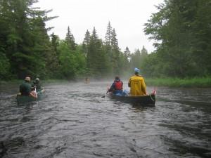 Webster Stream-1